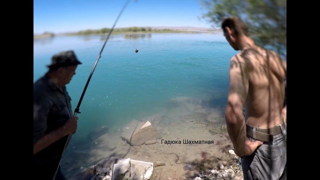 Рыбалка р. Или. Душевно провели время на природе. Море карася и ловля жереха.