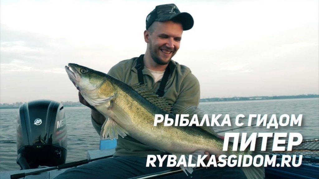 Рыбалка с гидом в Питере