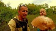 Поход за грибами! Грибы пошли!!! Очень много Белых грибов и Подосиновиков!