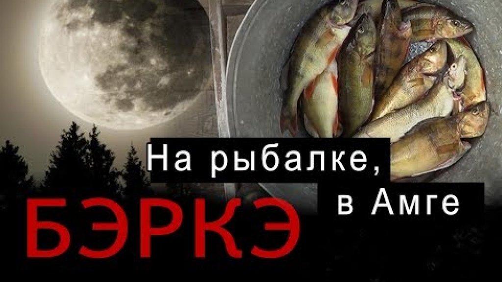 БЭРКЭ. Рыбалка на реке Амга в Якутии.//Fishing in Yakutia.