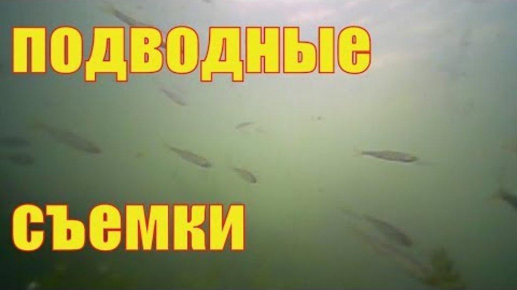 Подводные съемки с лодки. Камера фишка х 3.