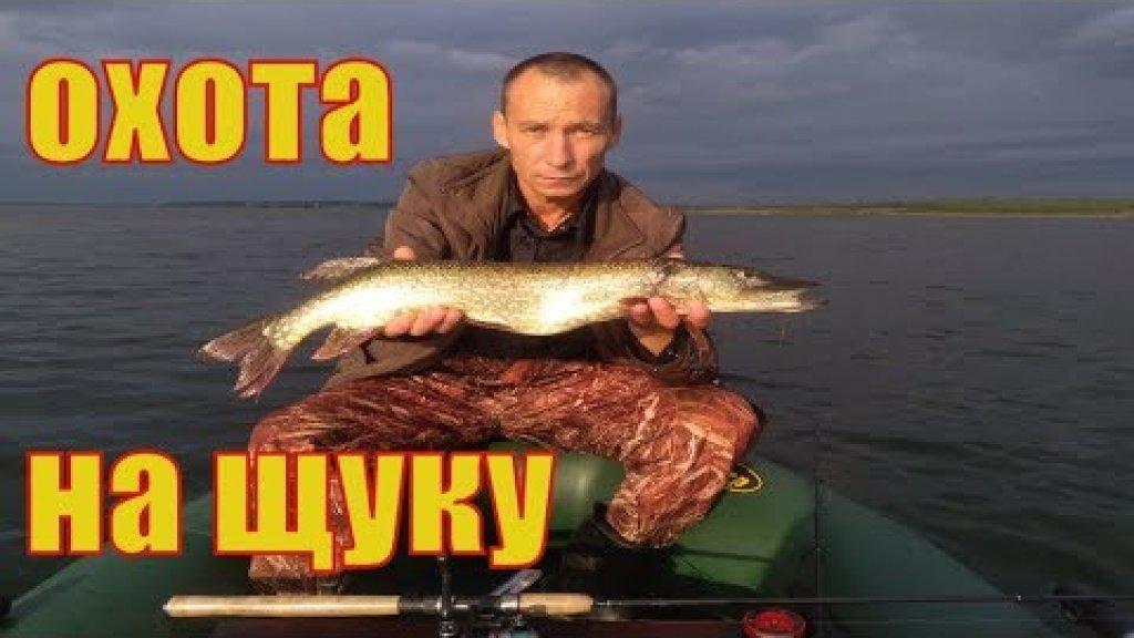 Рыбалка в августе.