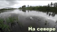 Рыбалка на севере. Бешеная щука в озере. Китайские воблера ловят!!!