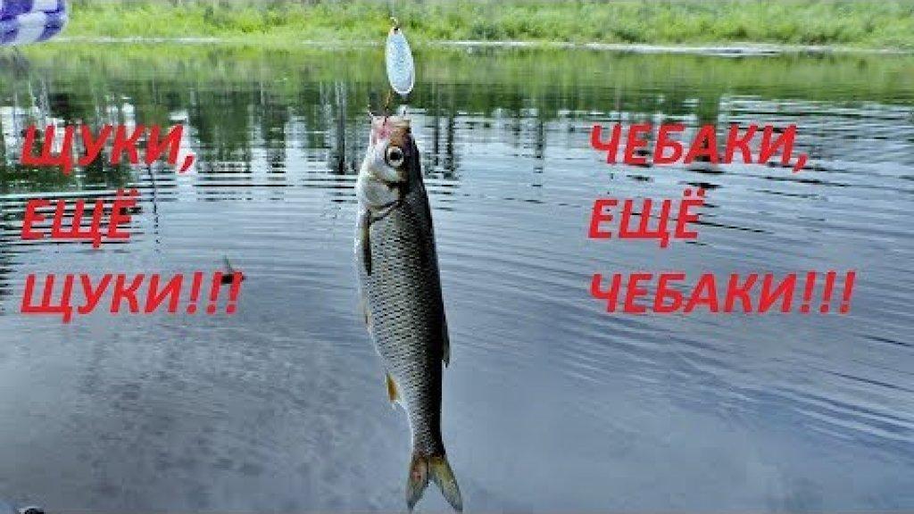 Щуки,щуки, и ещё щуки!!! Чебаки, чебаки и ещё чебаки!!!! На поплавок и блёсна! Super fishing.