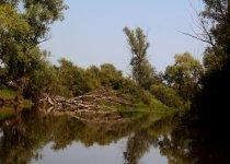 река УЕНЬ