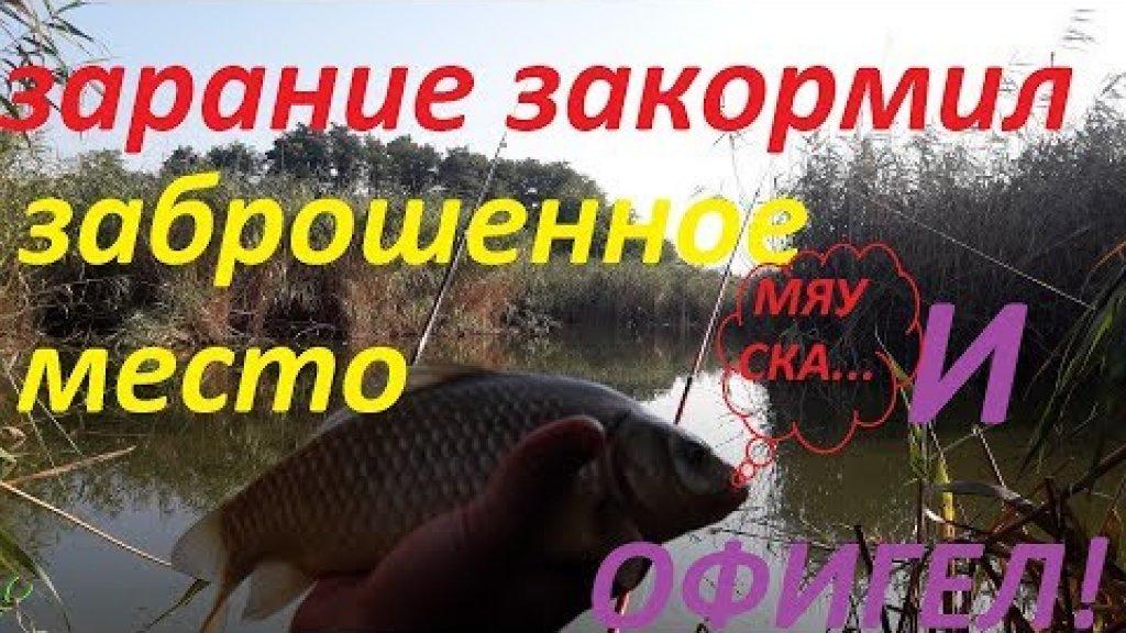 Супер рыбалка в заброшенном месте2 | закормил точку заранее  | карп карась черепаха)