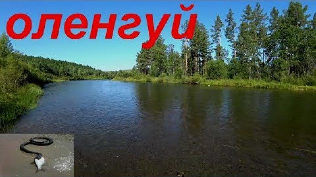 Рыбалка и ЗМЕИ на реке