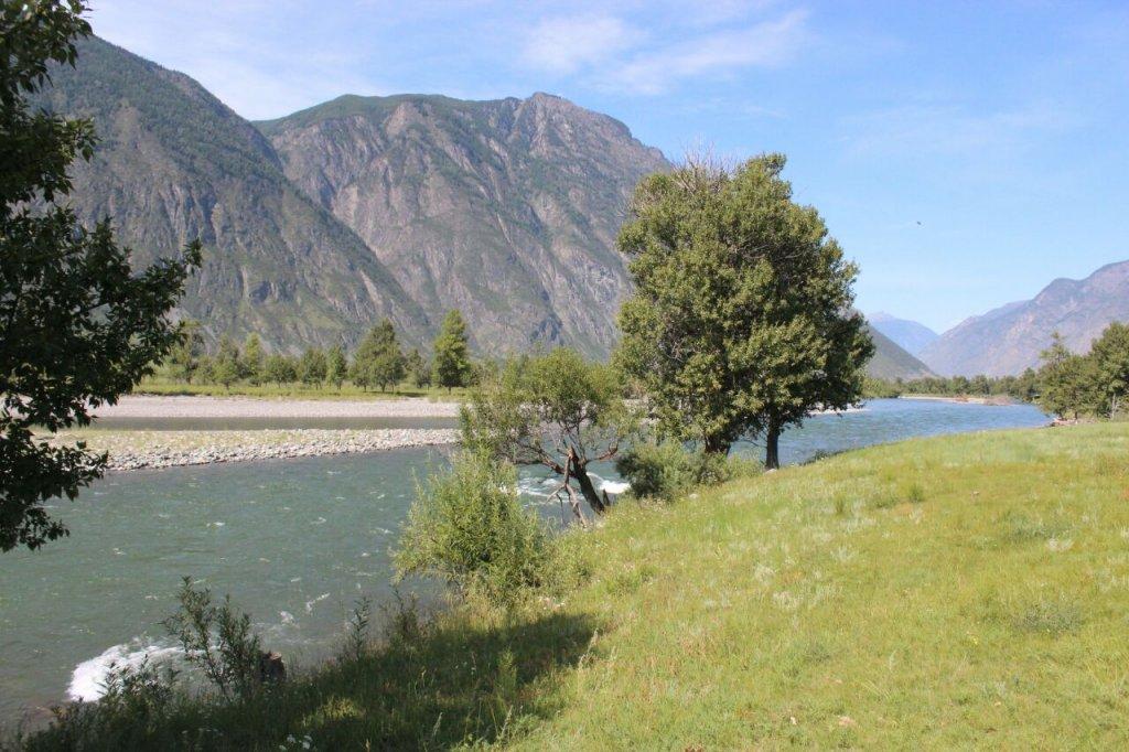 река Башкаус. Алтай.