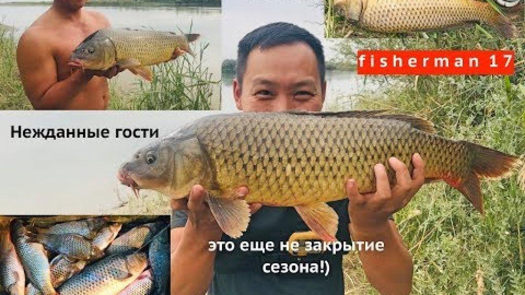 рыбалка осенью Кокжиде, новые места с высоты DJI Mavic, вброд, сазаны, проверки