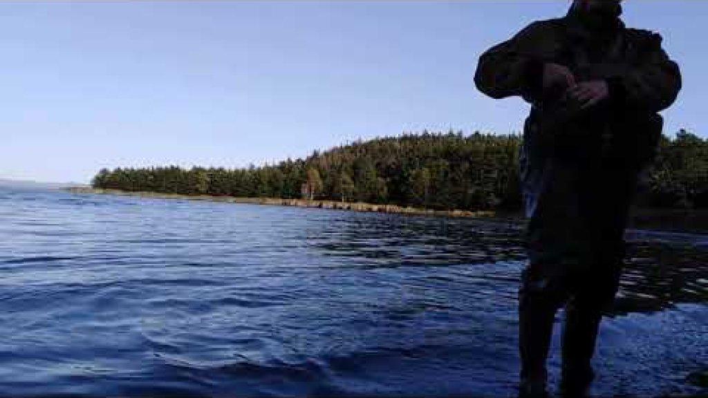 Непутёвая рыбалка на кету.