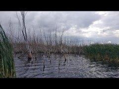 Рыбалка на водохранилище, спиннинг осенью 2019
