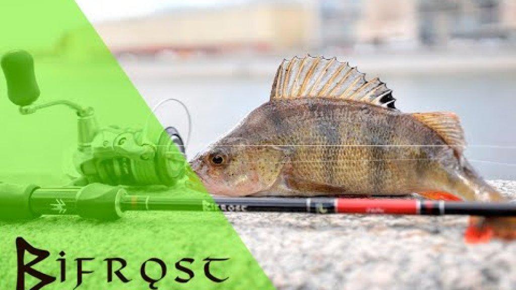 Спиннинги Norstream Bifrost. Трофейная рыбалка с лёгкой снастью