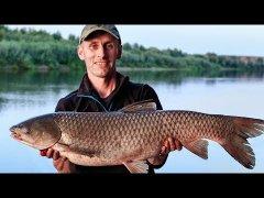 Два трофея за пол часа. Подсказали правильный монтаж. Рыбалка на реке Ахтуба 3 часть.