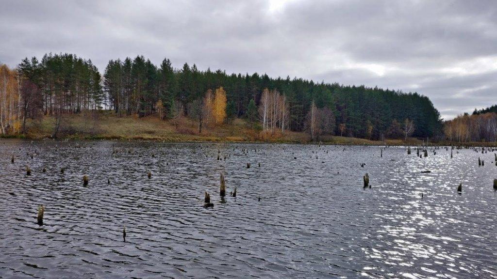 Ловля щуки в лютом коряжнике осенью, Рыбалка на спиннинг 2019