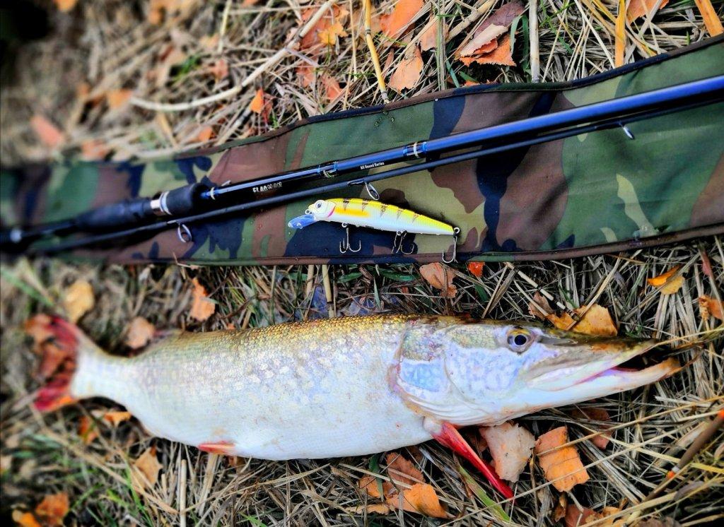 Осень побаловала погодой, а рыба поклёвками!