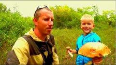 Охота за грибами. Белый грибы, подосиновики. Набрали полный ведра!!!