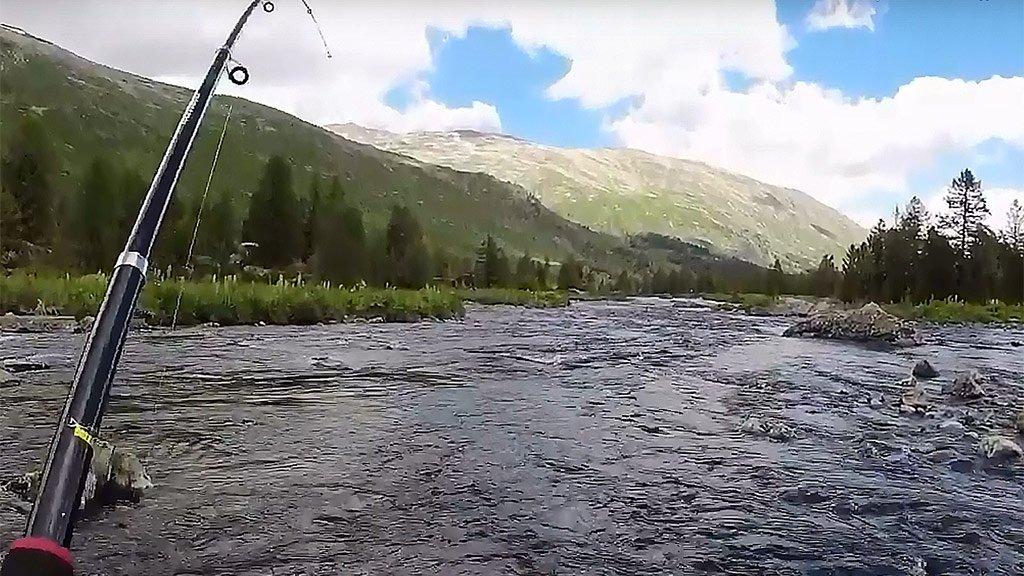10 дней в горах без продуктов по Плато Укок. Рыбалка кормит. 2 часть