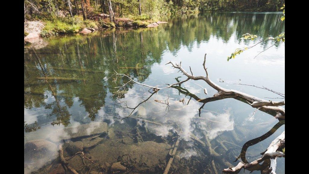 Озеро с кристальной водой. Один день в национальном парке. Рыбалка, ягоды, грибы.