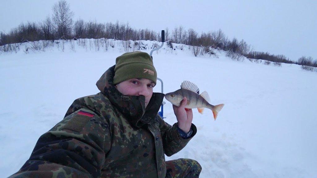 Рыбалка по льду. Косим окуня на блесну сс. Трофей еле пролез в лунку.