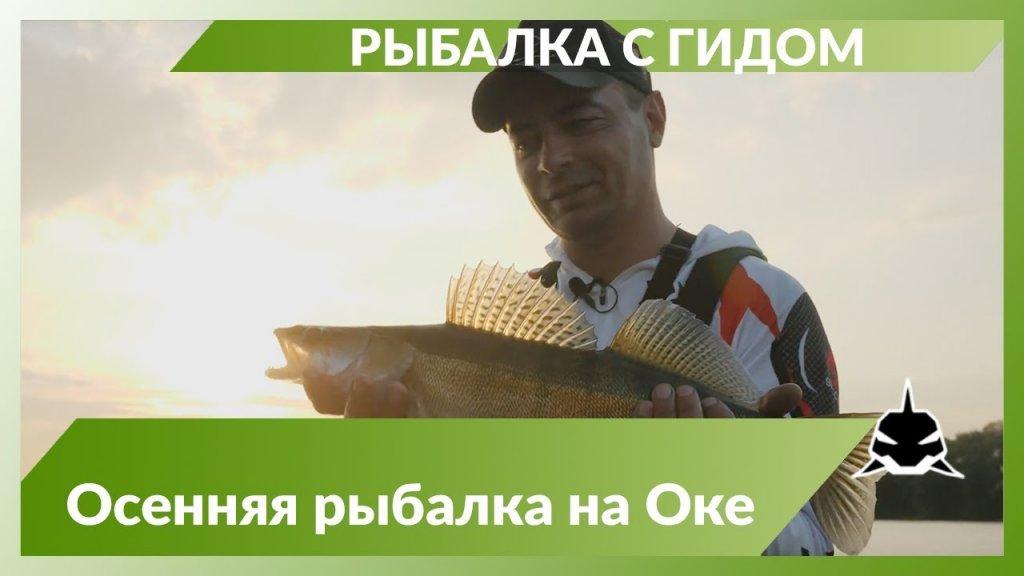 Рыбалка с гидом на Оке в районе Коломны.