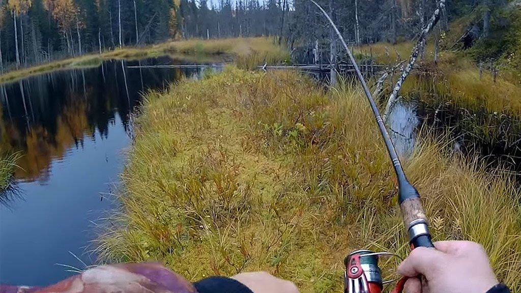 Рыбалка в Карелии. Дикий клёв щуки в ламбушках