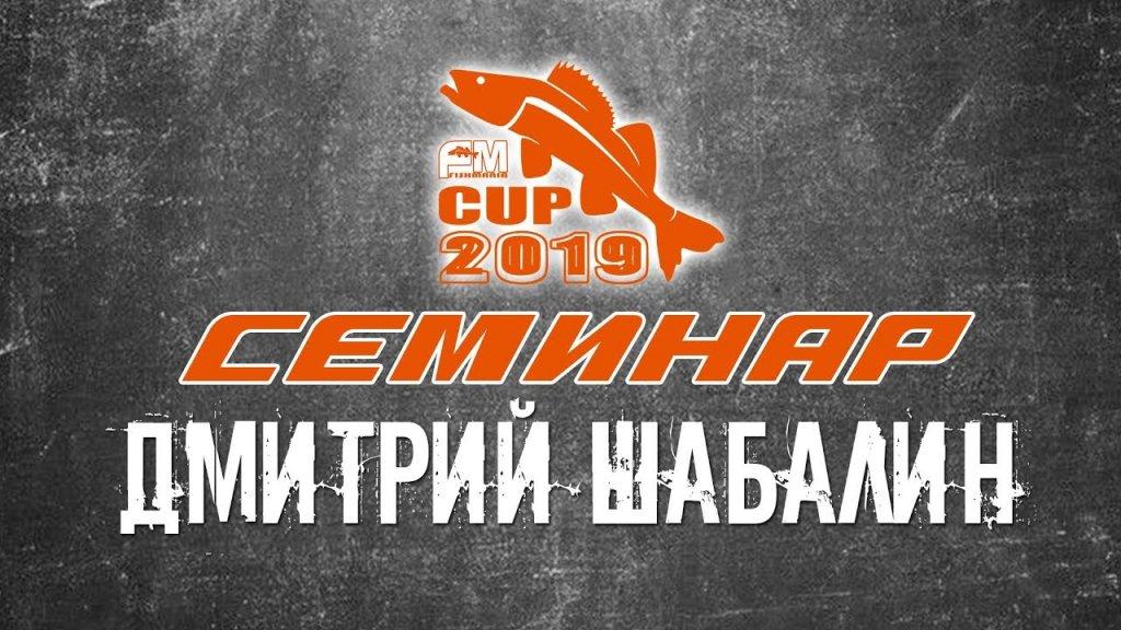 Дмитрий Шабалин - О PAL-е, курьезах, новинках и многом другом (часть первая)