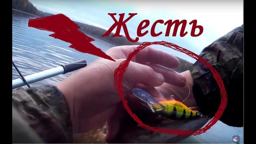 Рыбалка осенью. Ловля щуки и окуня . Троллинг  Жесть в конце 18+
