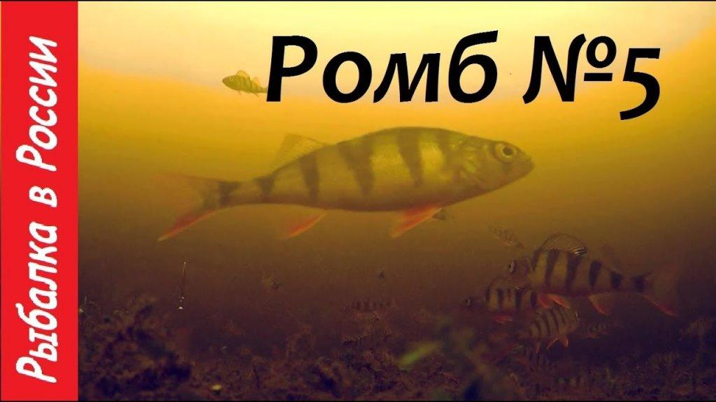 Ловля окуня на зимнюю блесну Ромб №5 . Подводная съёмка