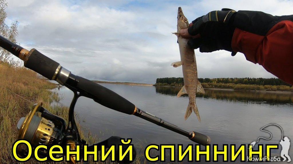 Осенний спиннинг 2019. Рыбалка на джиг. Река Вычегда