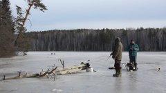 Щуки заставили основательно побегать по первому льду!