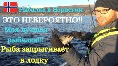 Это невероятно!!!! Рыба запрыгивает в лодку!!! Супер рыбалка! Рыбалка в норвегии! Лучшая рыбалка!