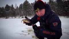 Первый лёд 2019-2020. Нашел окунёвую корягу, наконец-то рыбалка!