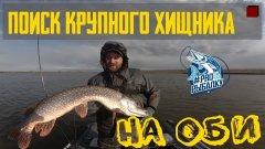 Как найти крупного хищника на реке: судак и щука