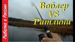 Ловля щуки на спиннинг в ноябре.  Ратлин vs Воблера