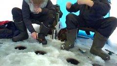 Зимняя рыбалка 2019 - 2020 ловим живца на жерлицы.