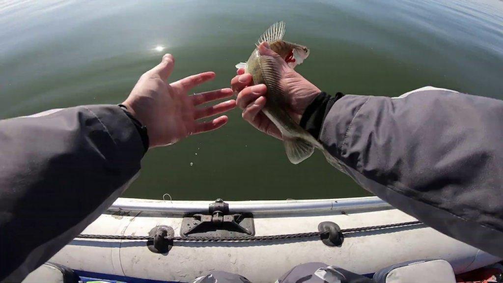 Рыбалка в Новосибирске. Обское водохранилище. Спиннинг осенью!