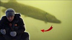 Щуки ломают удочки | зимняя рыбалка на щуку и окуня 2019 | балансир | мормышка | подводная камера