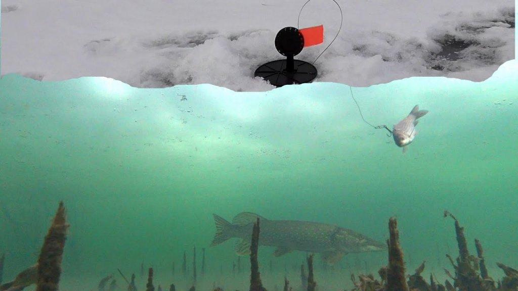 Щука как БРЕВНО! Рыбалка на жерлицы! Поиск рыбы Эхолот Deeper Chirp+