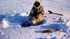 Зимняя рыбалка. Блеснение в отвес от инуитов