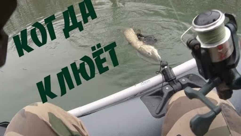 ПОЙМАЛ !Рыбалка с отличным уловом. Рыбалка в декабре #рыбалка #декабрь