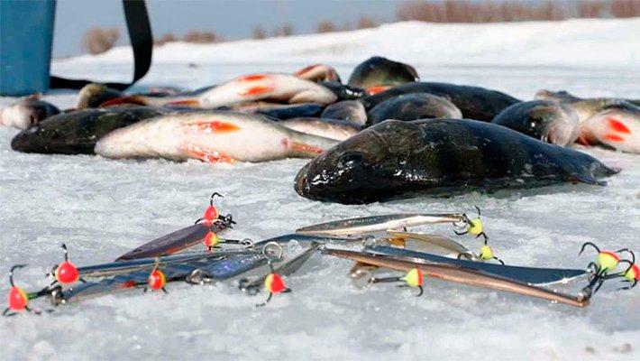 В Новосибирске состоится дебютный турнир по зимней блесне!