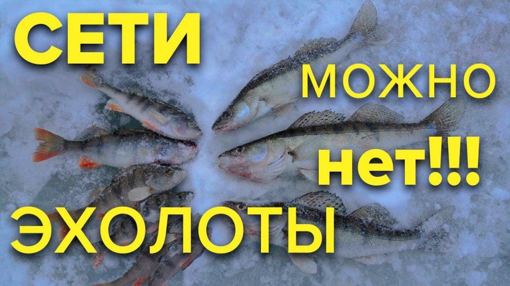 Попали на ХАПОК СУДАКА. РЫБАЛКА 2020 окунь балансир мормышка. Новое в законодательстве о рыбалке