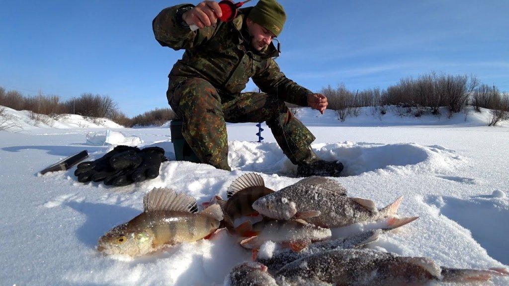 Рыбалка с одной лунки. Щуки и окуни стоят в очереди. Рыбалка мечты!