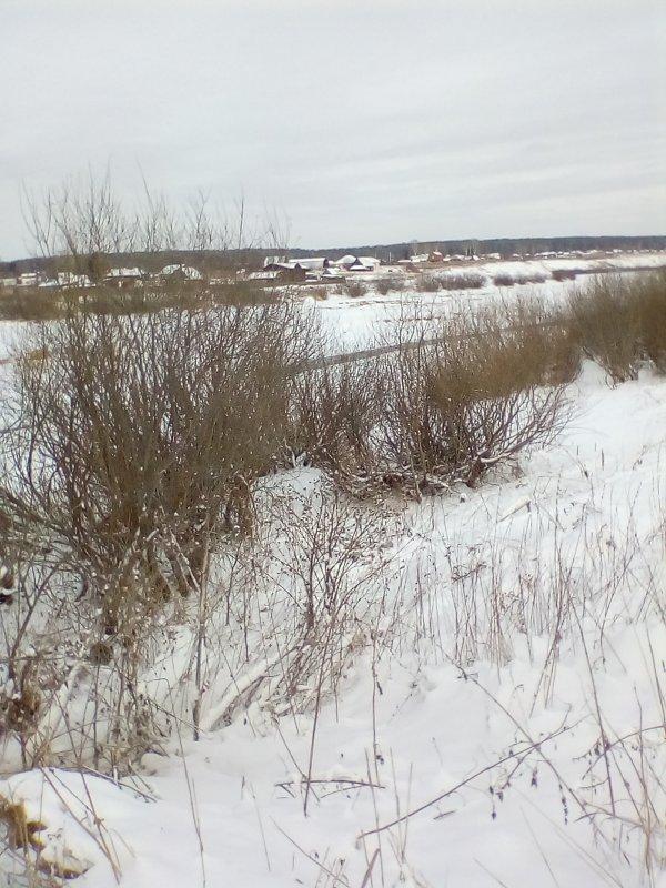 Ноябрский пейзаж (для biohimik)