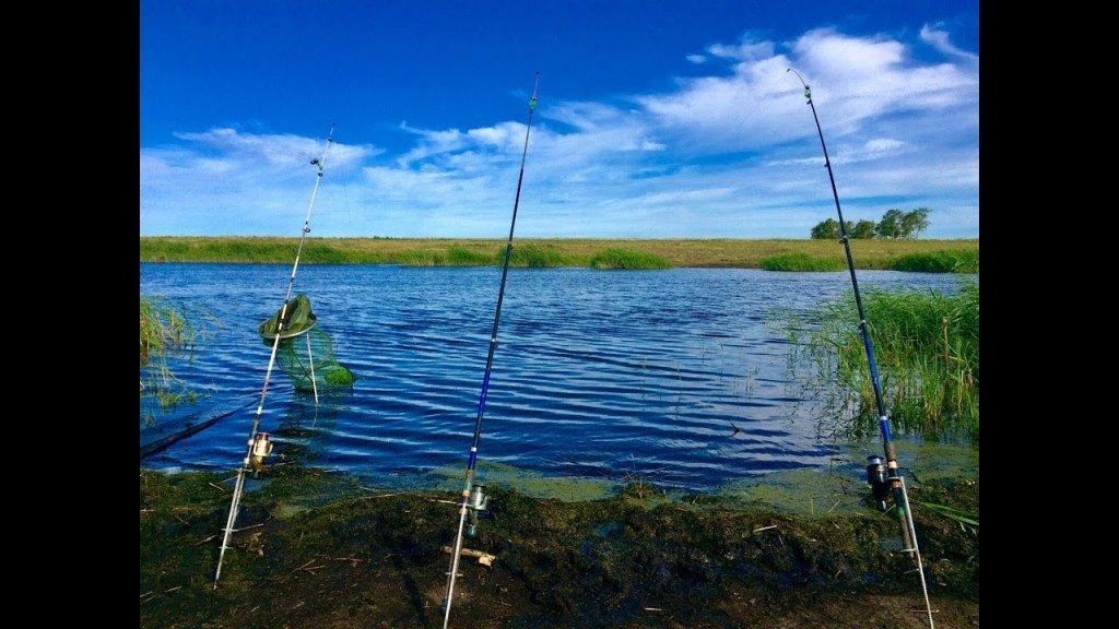 Ч.1 Сазан и крупный карась | Рыбалка с НОЧЁВКОЙ на реке Чулым