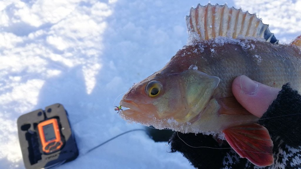 ЧЕРТово глухозимье! Рыбалка на чертика. Зимняя рыбалка 2020