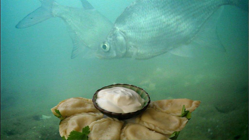 Реакция рыбы на вареники с картошкой и грибами! Подводная съемка