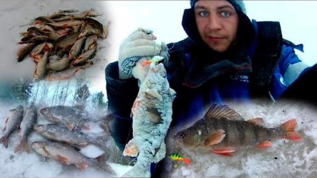 Ловля окуня на балансир, ловля сороги, подъязка, мохтика. Мои моменты с зимней рыбалки 2019 года.