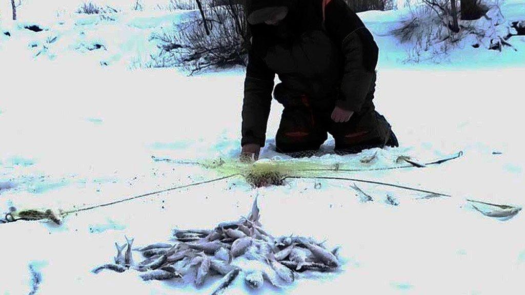 Супер снасть ловит по двадцать рыб за раз. Хапуга хлопок в действии