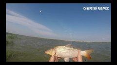 Ловля сазана / Сазан с лодки / озеро Чаны / рыбалка в Сибири
